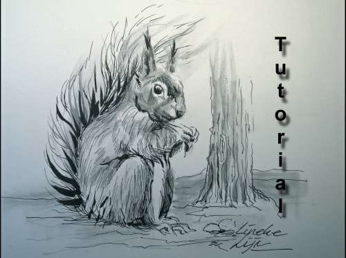 Drawing a furry SQUIRREL In Pencil and Ink, easy tutorial