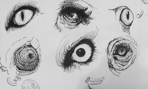 Line Drawing Eye : Pen ink drawing tutorials how to draw realistic animal eyes