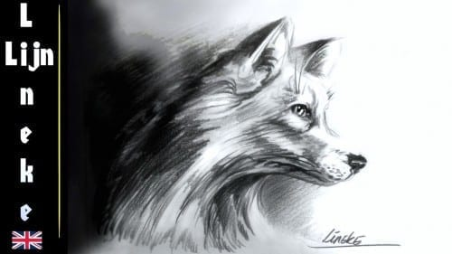 Realistic Fox Drawing With Graphite Pencils Very Easy For Beginners