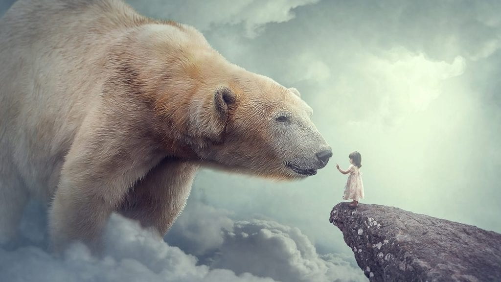 Big Bear Photoshop Manipulation Tutorial By Rafy A