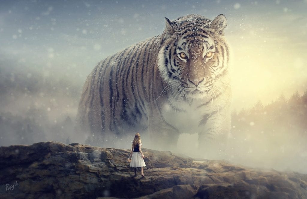 Tuto Niche Pour Chat big tiger - photoshop manipulation tutorialrafy a