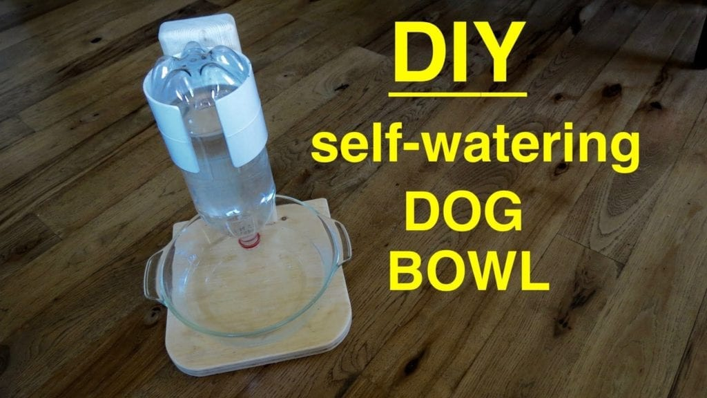 Self Filling Water Bowl Dispenser For Your Dog By Chris