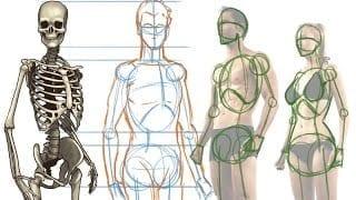How To Draw The Human Figure Hildur K O Art Blog