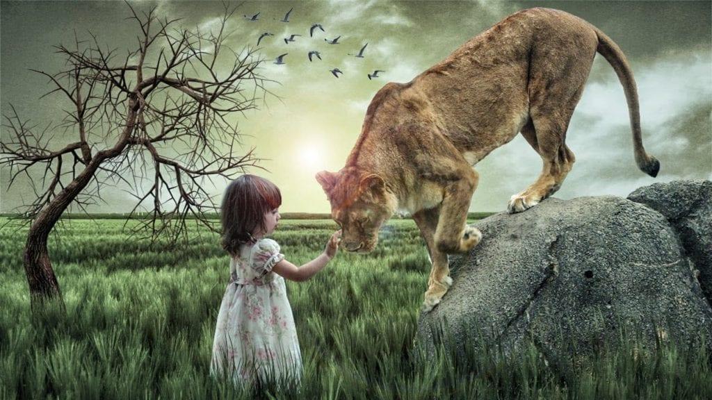 Photoshop Cc 2015 5 Manipulation Tutorial Animal Love