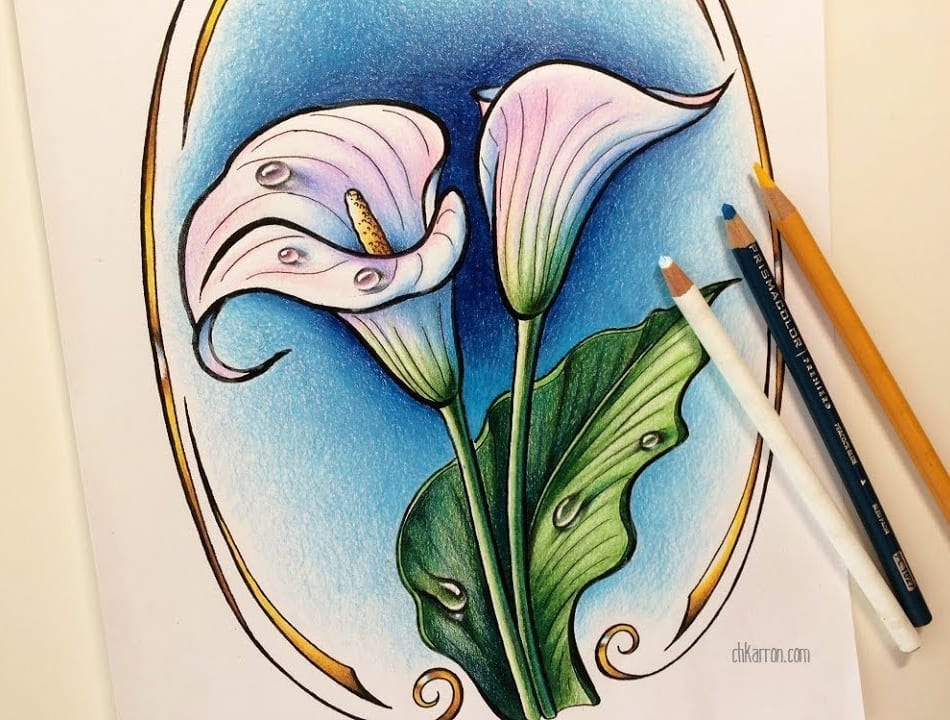fcc048f60 Calla Lily with water drops illustration, ink and colored pencils drawing,  coloring demo – Hildur.K.O art blog & shop