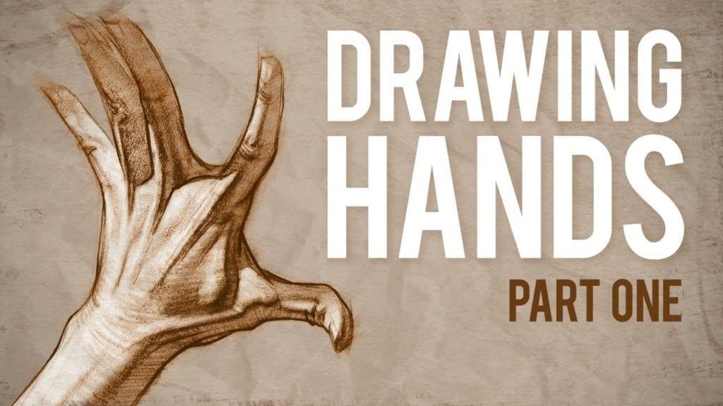 How to Draw HANDS, Muscle Anatomy of the Hand » Hildur.K.O