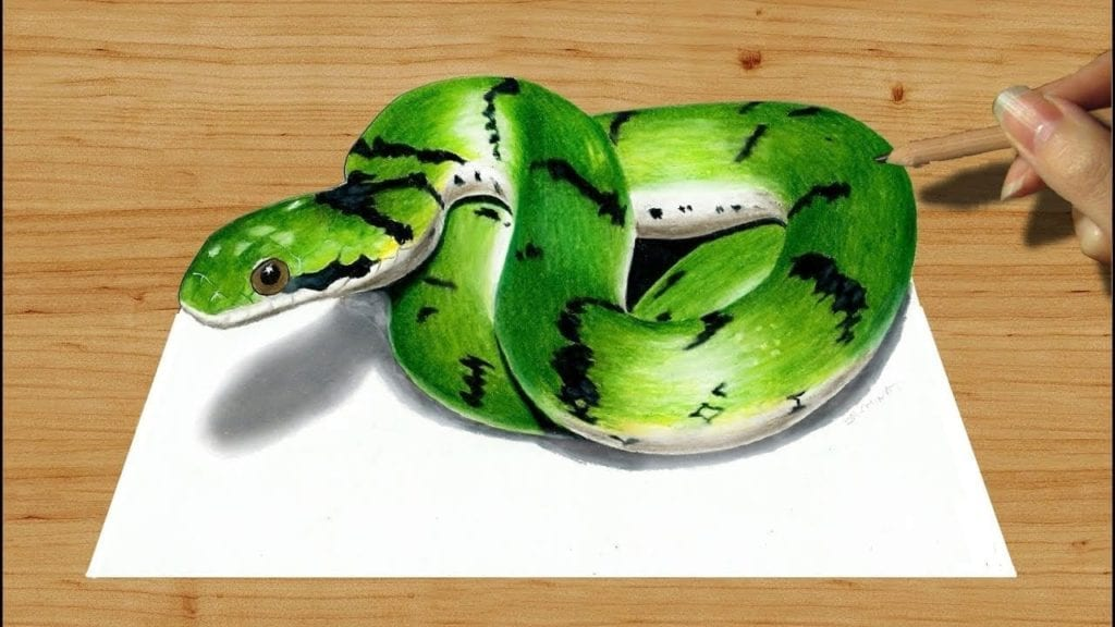 3D Colored Pencil Drawing, Cute Green Snake - Speed Draw ...