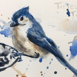 Painting a Bird in Watercolour, Tutorial