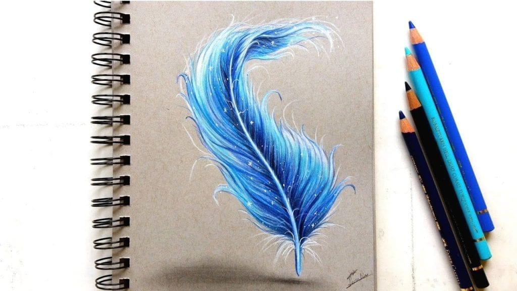 Feather Drawing With Colored Pencil Leontine Van Vliet