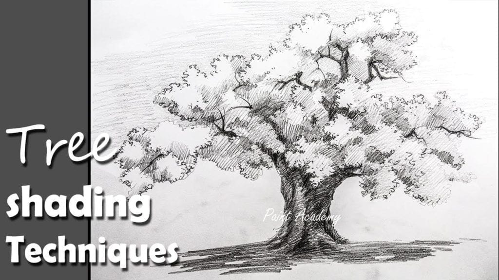 pencil drawing how to draw a tree in pencil with proper shading